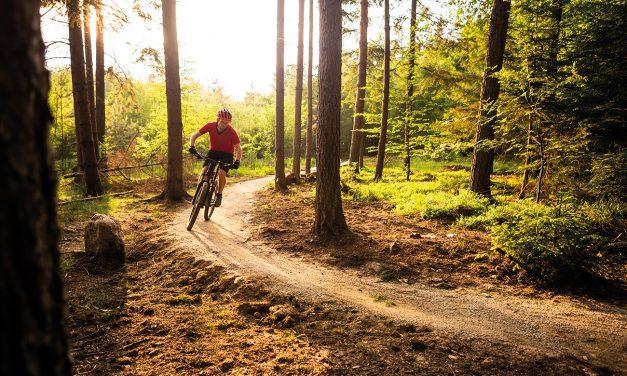 Cykelfrämjandet satsar på hållbara vandrings- och cykelleder